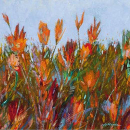 Colour-Fields-II-200