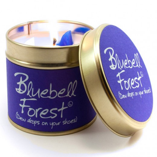 Bluebell-Forest